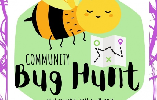 Bug Hunt - Spring/Easter Trail