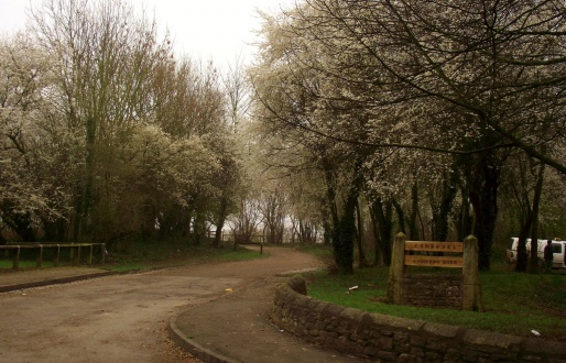 Campsall Country Park