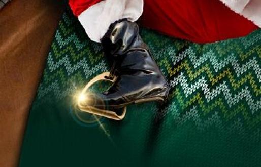 Christmas Jumper Raceday
