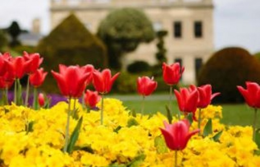 Blooming Gardens at Brodsworth Hall