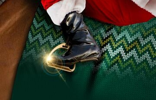 Christmas Jumpers Raceday