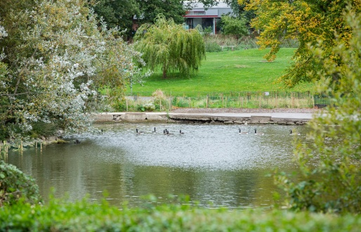 Sandall Park